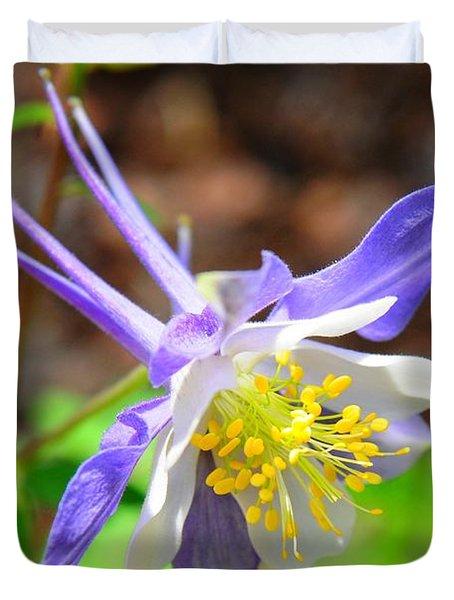 Colorado Blue Columbine Flower Duvet Cover