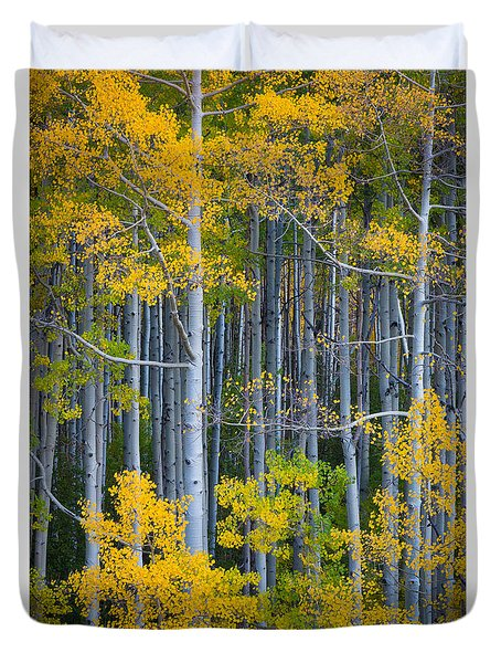 Colorado Fall Color Duvet Cover by Inge Johnsson