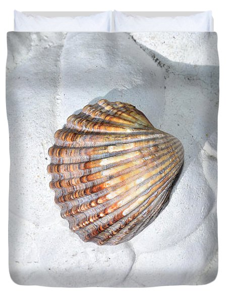 Colored Seashell  Duvet Cover