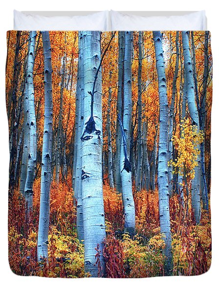 Colorful Aspens Duvet Cover by Brian Kerls