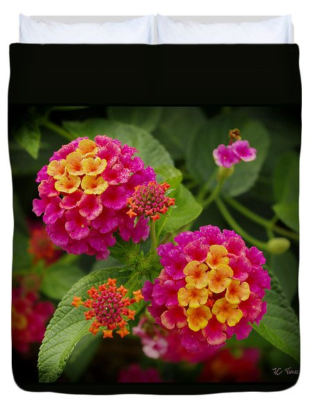 Colorful Lantana  Duvet Cover
