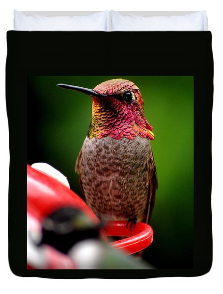 Duvet Cover featuring the photograph Colorful Male Anna Hummingbird On Perch by Jay Milo