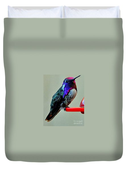 Duvet Cover featuring the photograph Colorful Male Costa's On Perch by Jay Milo