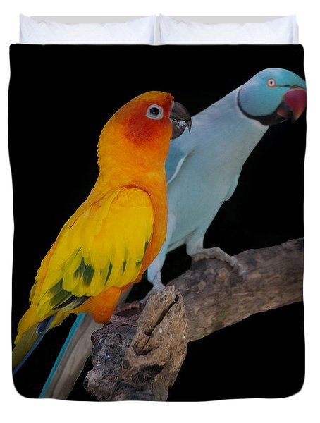 Sun Conure And Ring Neck Parakeet Duvet Cover
