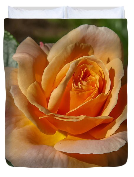 Colorful Rose Duvet Cover by Jane Luxton