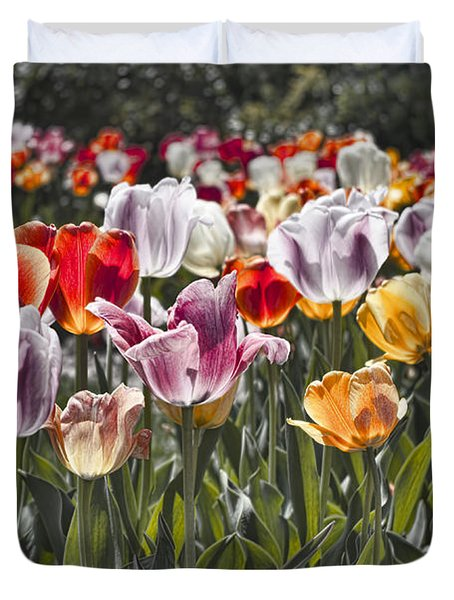 Colorful Tulips In The Sun Duvet Cover