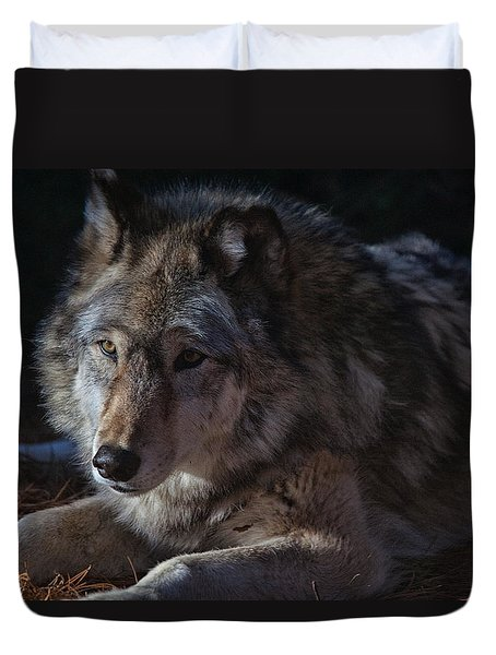 Colors Of A Wolf Duvet Cover by Karol Livote