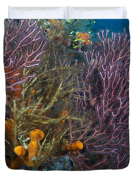 Colors Of Reefs Duvet Cover