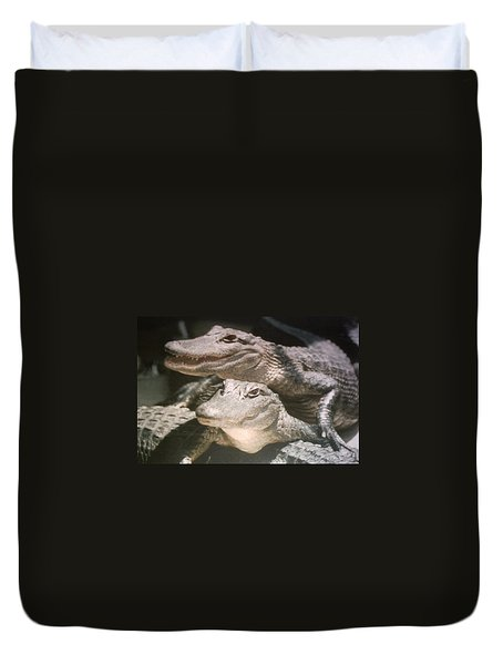 Duvet Cover featuring the photograph Florida Alligators Come Closer by Belinda Lee