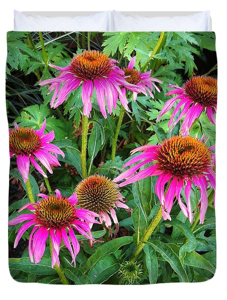 Duvet Cover featuring the photograph Comely Coneflowers by Meghan at FireBonnet Art