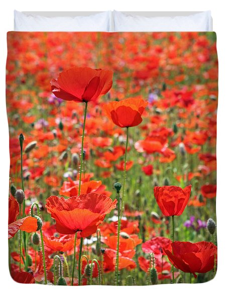 Commemorative Poppies Duvet Cover