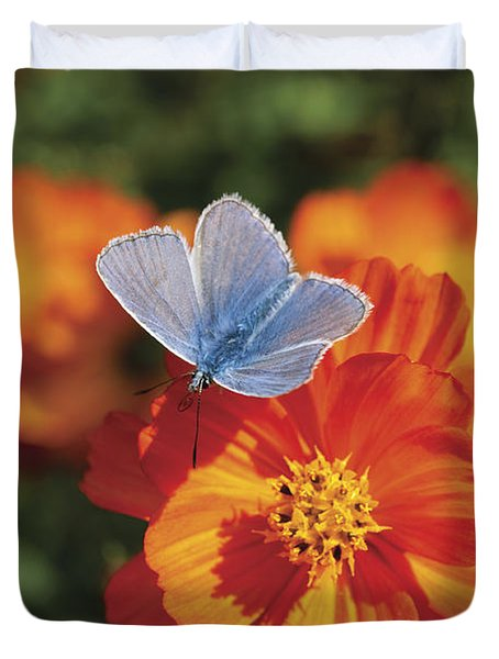 Duvet Cover featuring the photograph Common Blue Butterfly by Lana Enderle