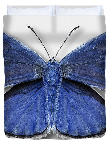 Common Blue Butterfly - Polyommatus Icarus Butterfly Naturalistic Painting - Nettersheim Eifel Duvet Cover