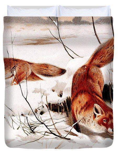 Common Fox In The Snow Duvet Cover by Friedrich Wilhelm Kuhnert