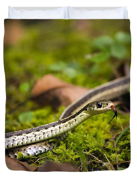 Common Garter Snake Duvet Cover
