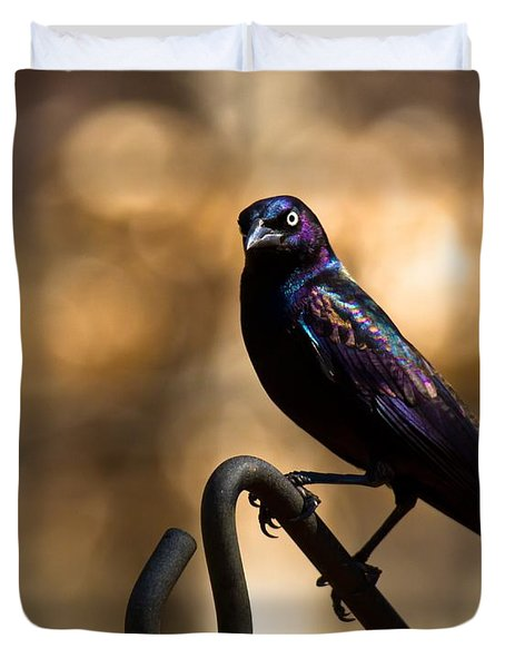 Duvet Cover featuring the photograph Common Grackle by Robert L Jackson