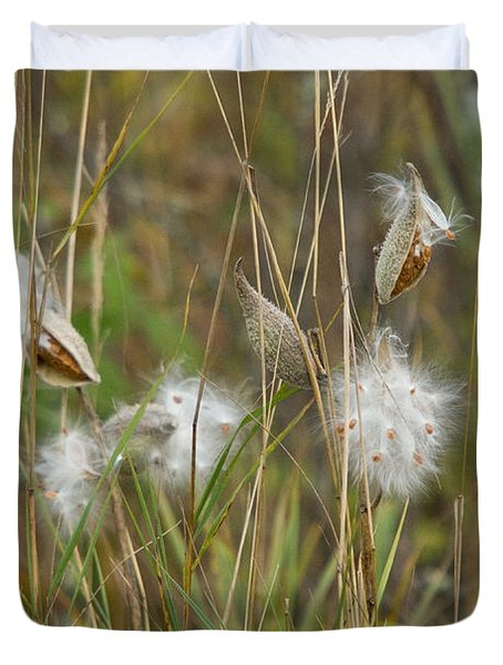 Common Milkweed Duvet Cover by Linda Freshwaters Arndt
