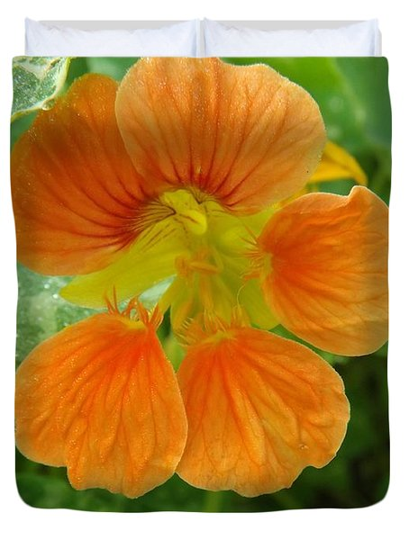 Common Nasturtium Duvet Cover