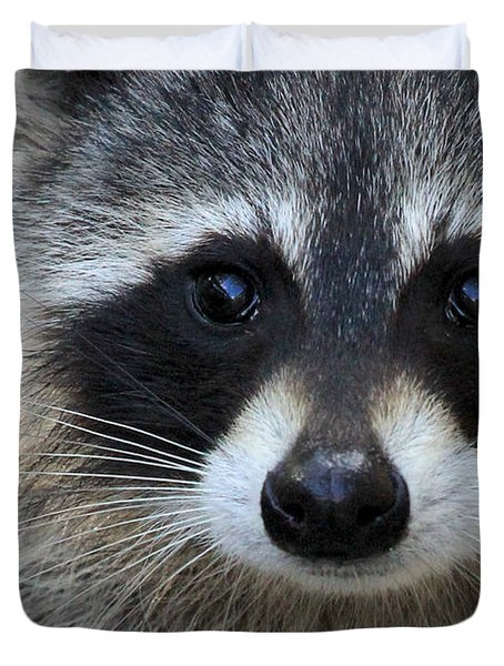 Common Raccoon Duvet Cover