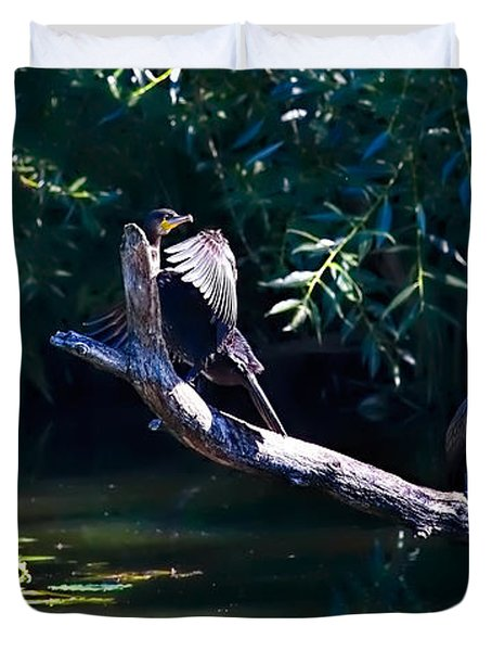 Duvet Cover featuring the photograph Comorant August 22 203 - Two Cormorant Draying On A Brach by Leif Sohlman