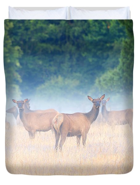 Concealed By The Fog Duvet Cover