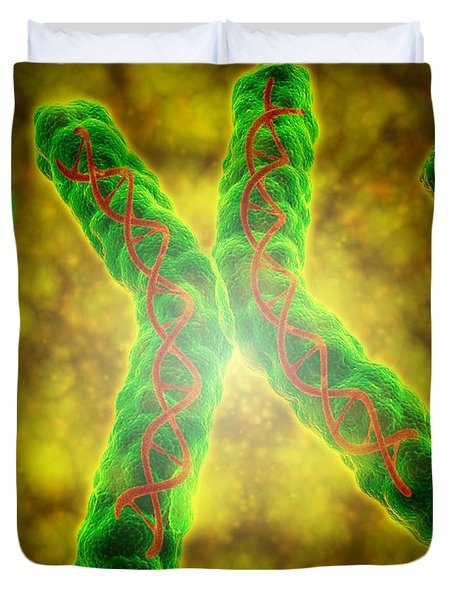 Conceptual Image Of A Telomere Duvet Cover by Stocktrek Images