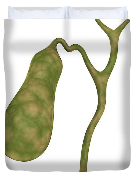 Conceptual Image Of Human Gall Bladder Duvet Cover