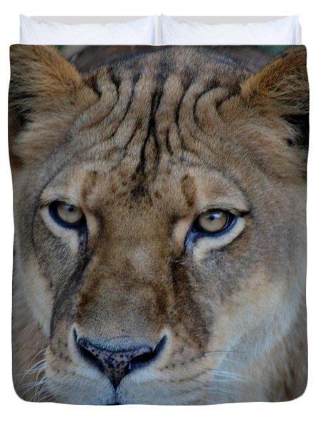 Concerned Lioness Duvet Cover