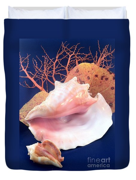 Conch Still Life Duvet Cover by Barbie Corbett-Newmin