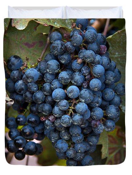 Concord Grapes Duvet Cover