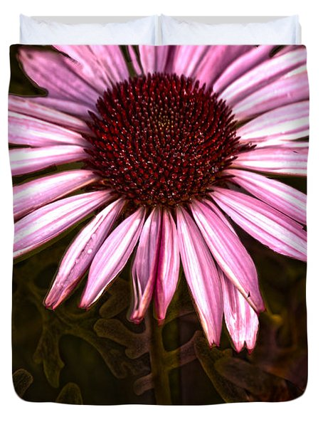 Coneflower And Dusty Miller Hdr Duvet Cover
