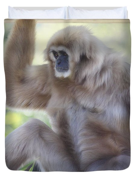 Contemplating Gibbon Duvet Cover by Melanie Lankford Photography