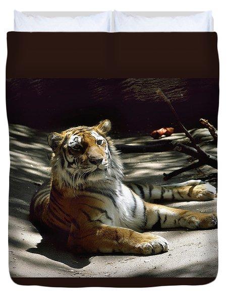 Content Tiger Duvet Cover