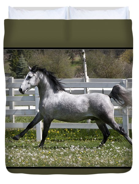 Conversano Catalina IIi Duvet Cover by Wes and Dotty Weber
