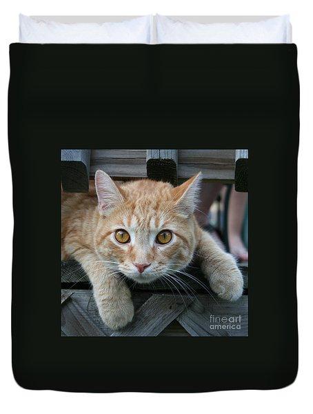 Cool Cat Named Calvin Duvet Cover