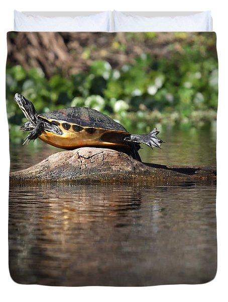 Cooter On Alligator Log Duvet Cover