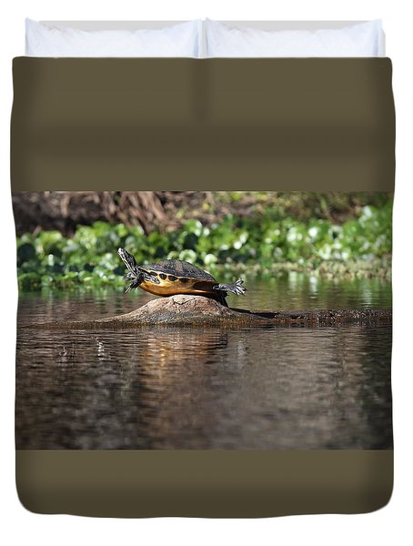 Cooter On Alligator Log Duvet Cover by Paul Rebmann
