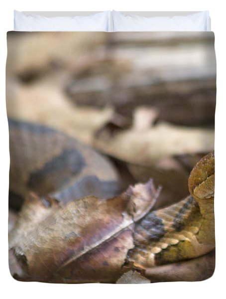 Copperhead In The Wild Duvet Cover