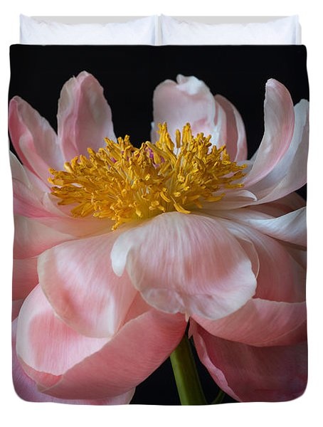 Coral Peony Duvet Cover