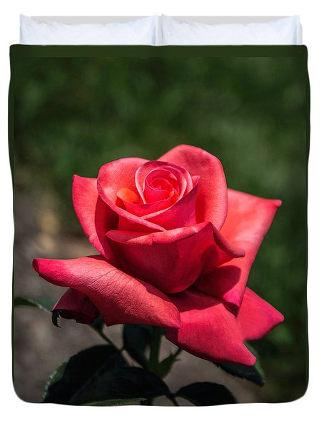 Coral Rose Duvet Cover