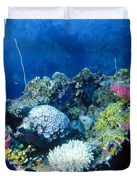 Corals On Ship Wreck Duvet Cover