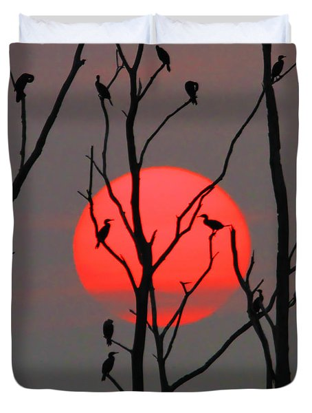 Cormorants At Sunrise Duvet Cover by Roger Becker