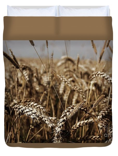 Duvet Cover featuring the photograph Corn Field by Vicki Spindler