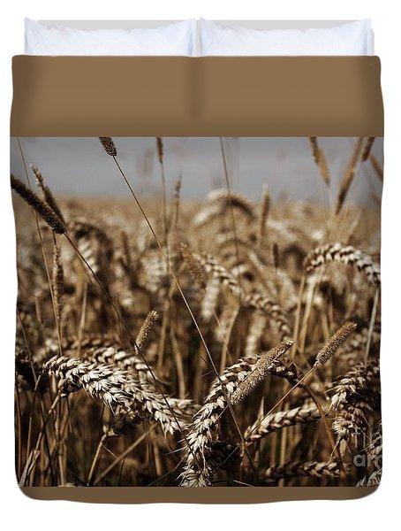 Corn Field Duvet Cover by Vicki Spindler