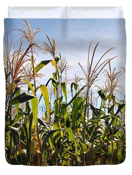 Corn Production Duvet Cover by Carlos Caetano
