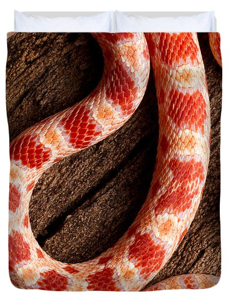 Corn Snake P. Guttatus On Tree Bark Duvet Cover