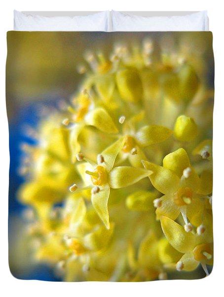 Cornelian Cherry. Cornus Mas. European Cornel Duvet Cover by Ausra Huntington nee Paulauskaite