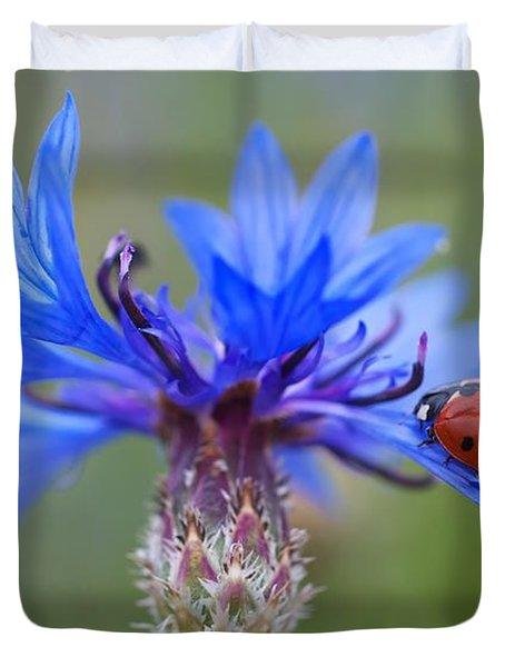 Duvet Cover featuring the photograph Cornflower Ladybug Siebenpunkt Blue Red Flower by Paul Fearn