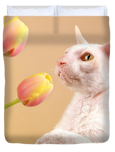 Cornish Rex Cat Duvet Cover by Verena Matthew