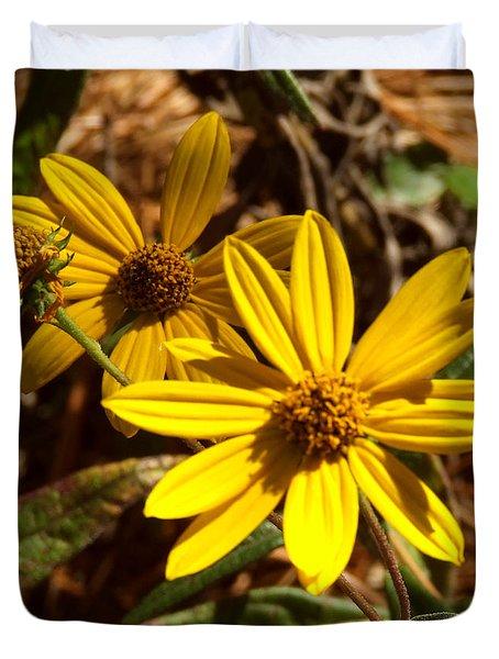 Cosmos Flower Duvet Cover by Andrea Anderegg